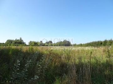 Działka rolna Kazimierz Dolny
