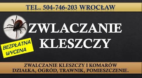 Opryski na kleszcze, Wrocław, cennik tel. 504-746-203.  Usługi zwalczania kleszczy na działce, zwalczanie, oprysk, usuwanie,  firma