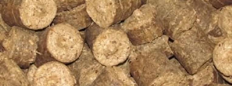Ukraina. Zrebki, zrzyny, trociny od producenta 4 zl/m3. Odpady surowca-1