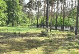 Działka leśna Zielonki