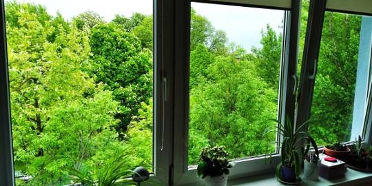 Sprzedam mieszkanie 3 pokojowe z tarasem i widokiem na park Prądnik Biały