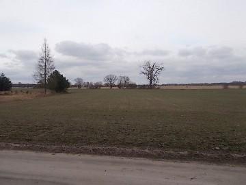 Działka siedliskowa Stęszewko, ul. Wiejska