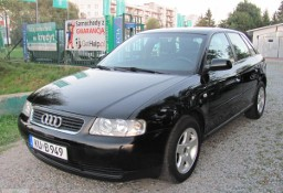 Audi A3 I (8L) 1.6 Attraction-FUL OPCJA-stan idealny-SERWIS-NIEM