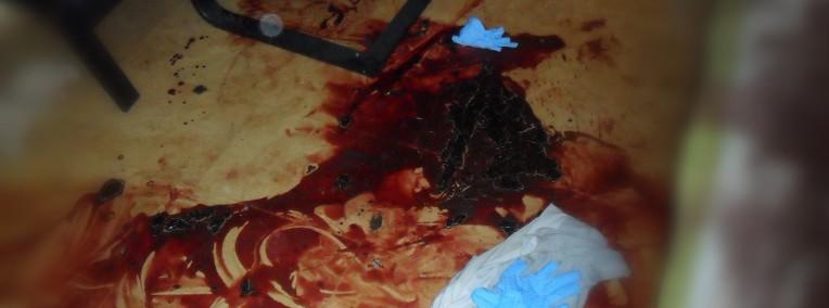 Sprzątane mieszkań firm hoteli po zmarłym zgonie dezynfekcja Tarnobrzeg-1
