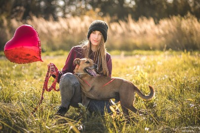 Bruno-mądry, 3-letni psiak szuka domu!
