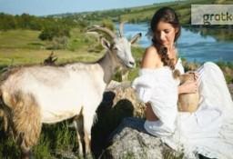 Ukraina.Gospodarstwo rolne, grunty pod uprawe drzew owocowych,wierzby