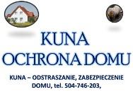 Pastuch na kuny, cena tel. 504-746-203, montaż, zabezpieczenie domu przed kuną, odstraszanie, odłowienie i ochrona budynku