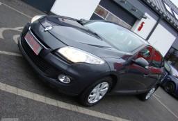 Renault Megane III Salon PL!! I właściciel!! 100% serwis ASO!! IGŁA!