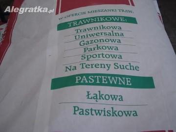 Nasiona trawy Rajgras angielski Warszawa