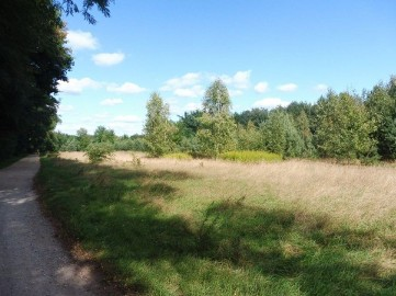 Działka rolna Michalin