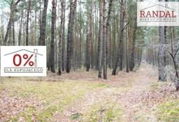 Działka leśna Młodzikówko