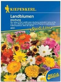 kwiaty ogrodowe - specjalna mieszanka nasion