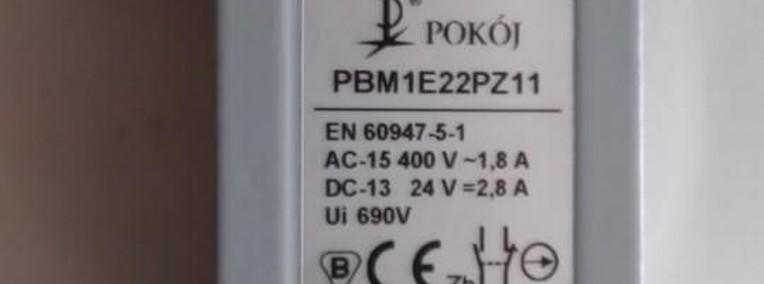 wyłącznik krańcowy PBM 1E22PZ11-1