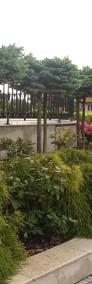 Ogrody Kielce. Projektowanie Ogrodów Kielce ,Pielęgnacja,Nawodnienia-4