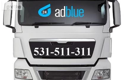 Emulator AdBlue Wyłączanie AdBlue MAN TGX TGA TGS EEV Euro 5 6 Lublin