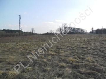 Działka rolna Maliszew
