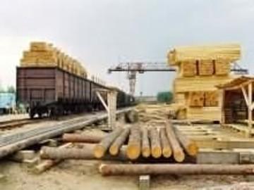 Ukraina.Drewno opalowe 15 zl/m3, zrzyny tartaczne 4 zl/m3