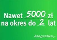 Pożyczka do 5000 zł na okres do 24 miesięcy w 15 minut