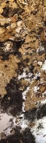 Rustic Black - Fornir kamienny transparentny do podświetlenia-3