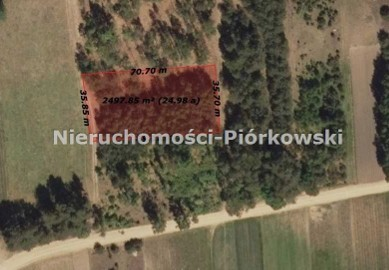 Działka leśna Blochy, ul. Różana