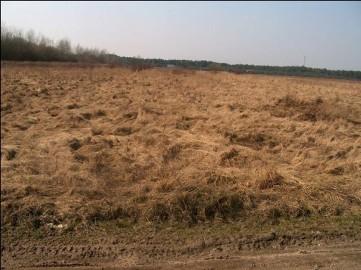 Działka rolna Kamieniec