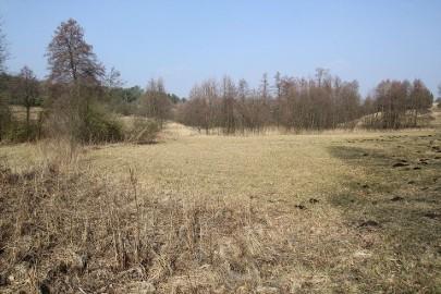 Działka rolna Fiałki
