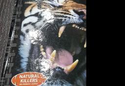 Filmy na DVD: Tygrysy, Złotowłosa i 3 misie, Little People