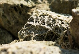 Kamień ogrodowy Spoggos - morski / Kar-Group Ełk