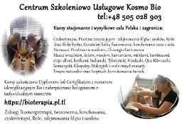 Kurs Reiki świecowania Terapii Ojca Klimuszko Czakroterapii masażu Katowice