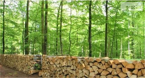 Nieograniczone ilosci surowca drzewnego, rolnego latwiejszego