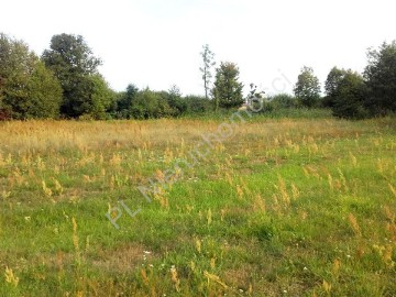 Działka rolna Gągolina