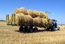 Ukraina.Grunty rolne.Biomasa.Sloma zbozowa,rzepakowa,lniana.Od 70 zl/