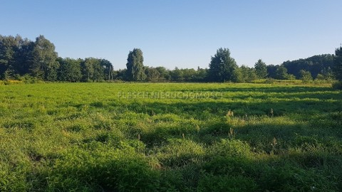 Działka rolna Brwinów
