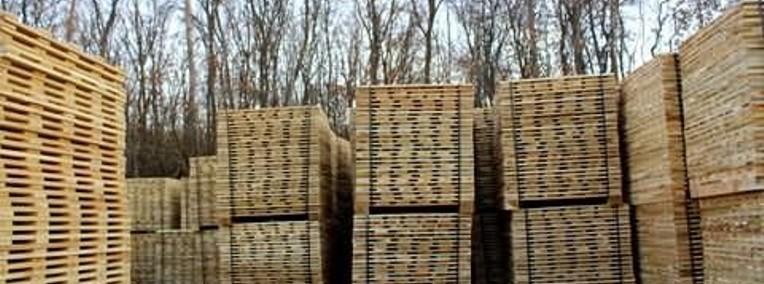 Ukraina. Wspolpraca. Drewno 15 zl/m3. Produkcja europalet, desek.Tanio-1
