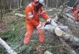 Kurs na piły spalinowe pilarki mechaniczne Cała Polska