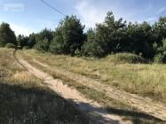 Działka leśna z prawem budowy Korfowe