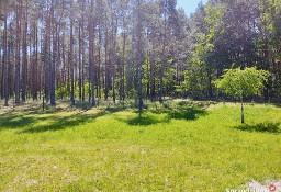 Kupię działkę budowlaną przy lesie w okolicach Tarnowskich Gór, Gliwic, Katowic
