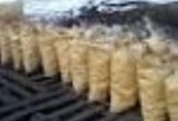 Ukraina. Wegiel drzewny 930 zl/tona, brykiety 240 zl/tona, carbon 90 zl/tona. Stala sprzedaz paliwa