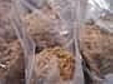 Torf włóknisty, wełnianka torfowa pH 3,5 wysyłka-1