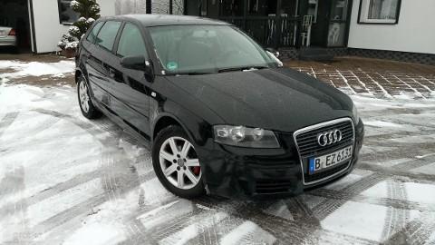Audi A3 II (8P) Sportback 1.9 TDI Serwisowany Bardzo Zadbany *RATY