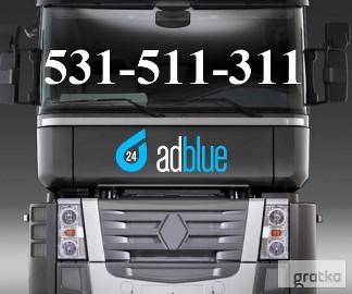 Wyłączanie Adblue Renault Premium DXI Magnum EEV Katowice