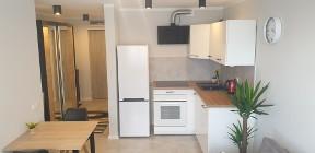Mieszkanie do wynajęcia Katowice Tysiąclecie ul. Tysiąclecia – 39 m2
