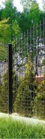 Przęsło ogrodzeniowe wzór łuku fi 5mm 130x240cm oc+kolor P-01-3
