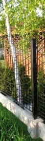 Przęsło ogrodzeniowe wzór łuku fi 5mm 130x240cm oc+kolor P-01-4