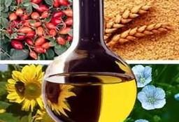 Ukraina. Soja warzywna, nasiona suche 1,4 zl/kg ,olej, makuch, maczka.