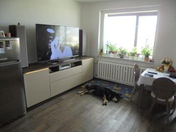 Mieszkanie Żory Księcia Władysława