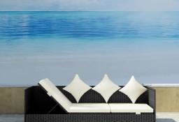 vidaXL Sofa ogrodowa z poduszkami, polirattan, czarna 41311